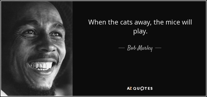 quote-when-the-cats-away-the-mice-will-play-bob-marley-131-29-17